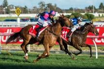 Regal Roller Stakes - Caulfield Racecourse
